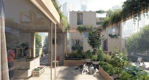 Decoración de espacios con plantas