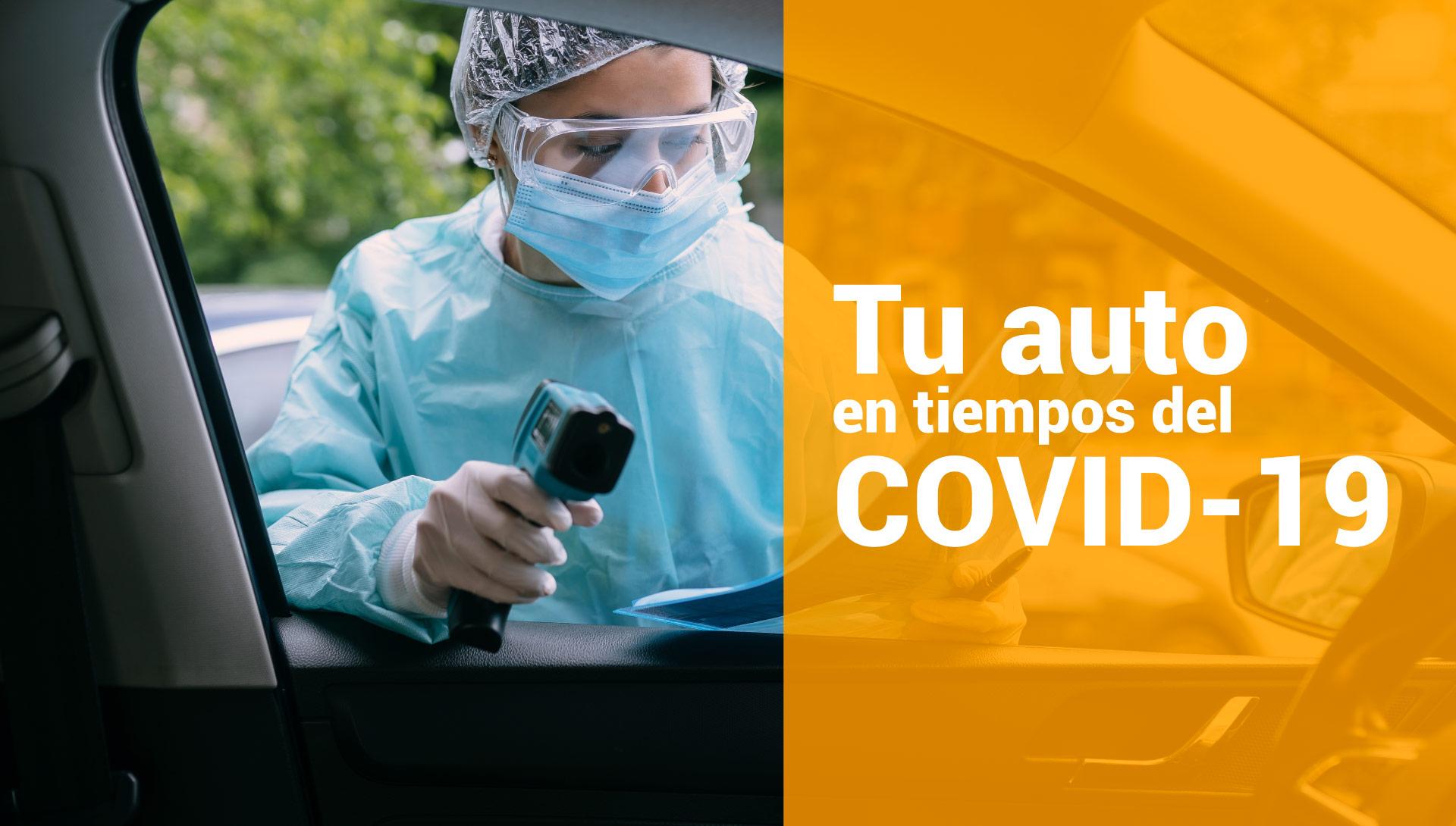 Desinfección vehículos