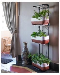 Jardines verticales para espacios reducidos